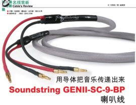 Soundstring Speaker cables Review